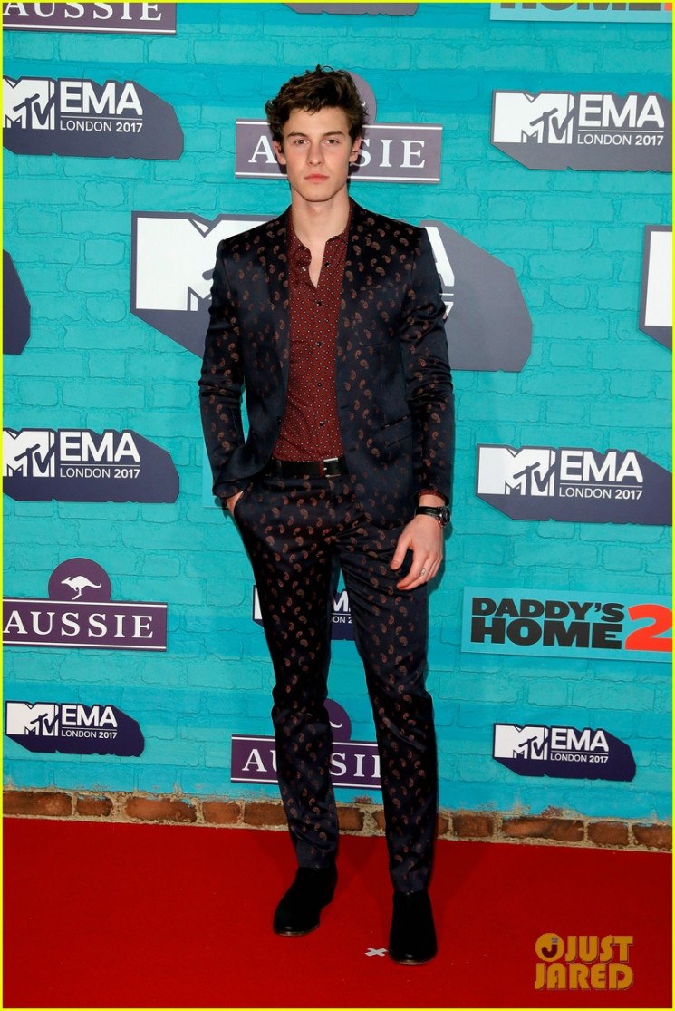 Shawn Mendes (Depositphotos)